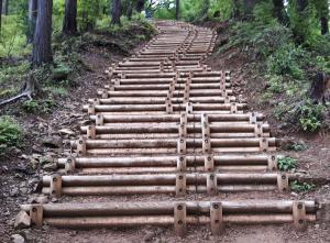 Set of steps